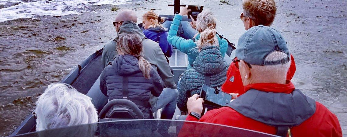 rib varen - zeehonden spotten - zon