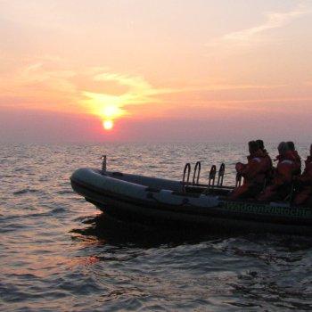 Dagtochten op de Waddenzee - Groningen - RIB varen - Waddenribtochten