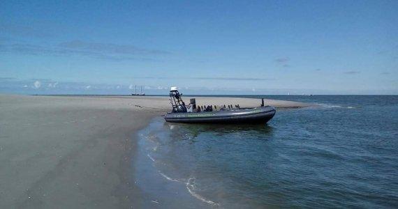 Rib - varen - boottocht - zeehond - bedrijfsuitje