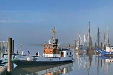 Ditzum - Dagtocht naar Ditzum Wadden Varen RIB tochten Groningen