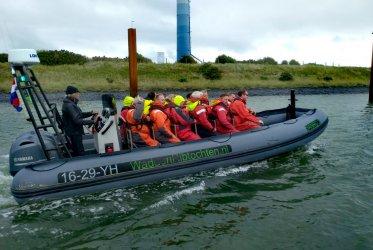 Zeeman - zeehonden - Eemshaven - zeehond