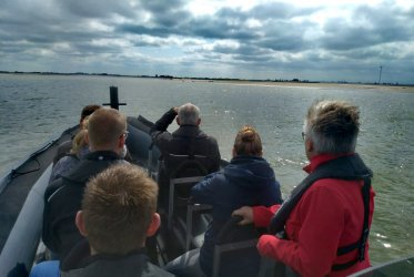 Zout - strand - wadden - Waddenzee