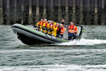 Zeehond - bedrijf - uitje - varen - boottocht