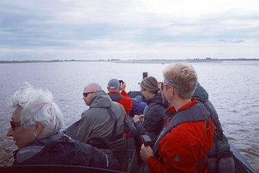 Varen - powerboat - eemshaven - zeehonden
