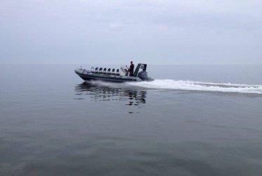Op de terugweg - waddenzee zeehonden varen groningen eemshaven delfzijl