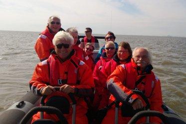 Varen op het wad - rust en ruimte bij het zeehonden spotten - Groningen - Waddentochten